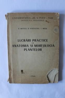 D. Mititelu, D. Dascalescu, T. Motiu - Lucrari practice la anatomia si morfologia plantelor
