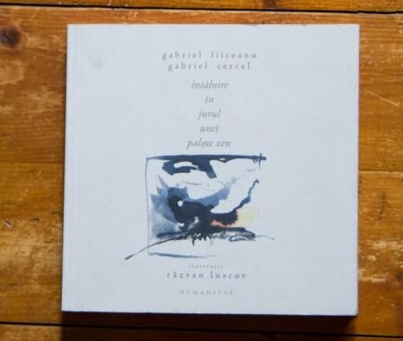 Gabriel Liiceanu, Gabriel Cercel - Intalnire in jurul unei palme zen