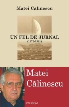 Matei Calinescu - Un fel de jurnal (1973-1981)