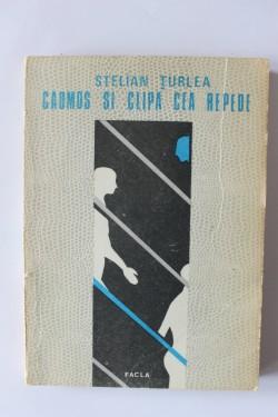 Stelian Turlea -
