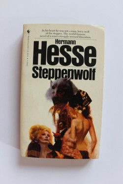 Hermann Hesse - Steppenwolf (editie in limba engleza)
