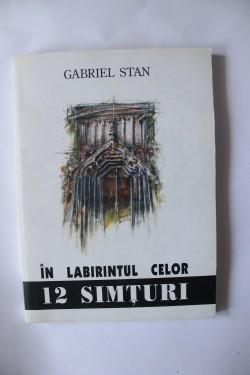 Gabriel Stan - In labirintul celor 12 simturi