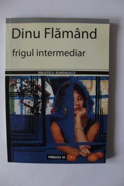 Dinu Flamand - Frigul intermediar