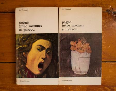 Ion Frunzetti - Pegas intre Meduza si Perseu (Galceava si impacarea vazului cu lumea. Forma si semn) (2 vol.)