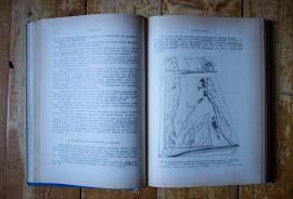 N. Oncescu - Geologia Republicii Populare Romane (editie hardcover)