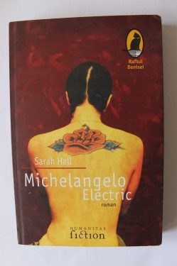 Sarah Hall - Michelangelo Electric