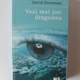 David Grossman - Vezi mai jos: dragostea