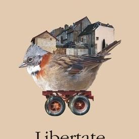 Jonathan Franzen - Libertate