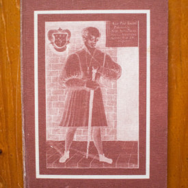 Mihai Neagu Basarab - Paracelsus. Calatorie neintrerupta (editie hardcover)