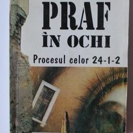 Mircea Bunea - Praf in ochi. Procesul celor 24-1-2