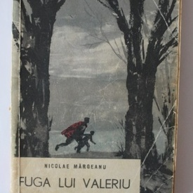 Nicolae Margeanu - Fuga lui Valeriu