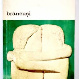 Sidney Geist - Brancusi. Un studiu asupra sculpturii