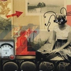 Sylvia Plath - Johnny Panic si Biblia Viselor
