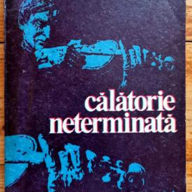 Yehudi Menuhin - Calatorie neterminata