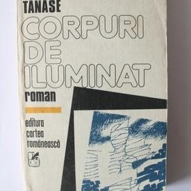 Stelian Tanase - Corpuri de iluminat