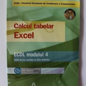 Colectiv autori - Calcul tabelar. Excel. ECDL Modulul 4