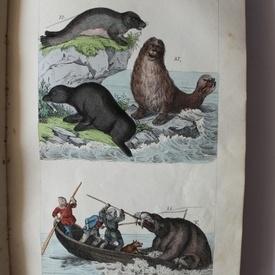 Hanak Ker. Janos - Termeszetrajz vagyis (editie hardcover, 1846)