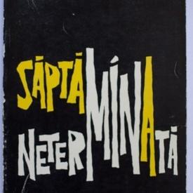 Petre Salcudeanu - Saptamana neterminata