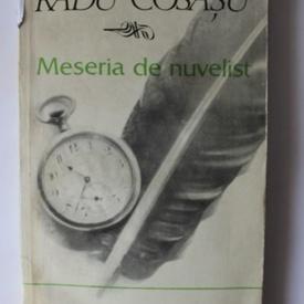 Radu Cosasu - Meseria de nuvelist