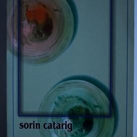 Sorin Catarig - Unele consideratii asupra tehnicii salvarii aparentelor