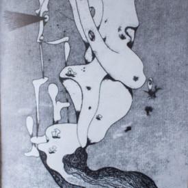 Tristan Tzara - Les premiers poemes, suivis de 5 poemes oublies