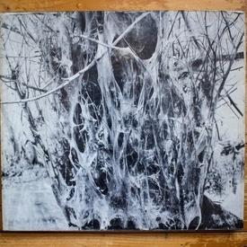 Dan Grigorescu - In Delta Dunarii (editie hardcover, album alb-negru cu 16 fotografii color)