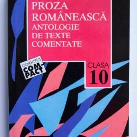 Gabriela Dinu, Ruxandra Ivancescu, Ana Popescu (coord.) - Proza romaneasca. Antologie de texte comentate