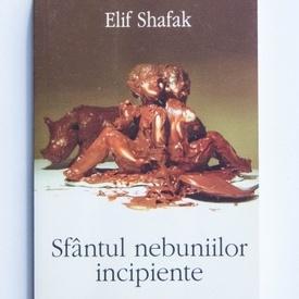 Elif Shafak - Sfantul nebuniilor incipiente