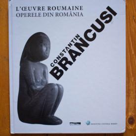 Nicolae Sandulescu, Jacqueline Delaunay-Hologne - Constantin Brancusi. L`oeuvre roumaine / Constantin Brancusi. Operele din Romania (editie hardcover, bilingva, romano-franceza)