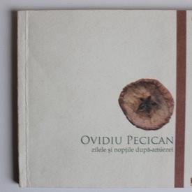 Ovidiu Pecican - Zilele si noptile dupa-amiezei