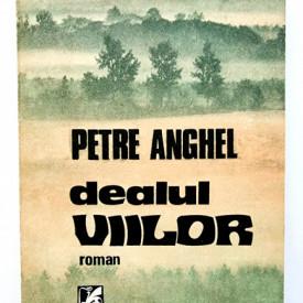 Petre Anghel - Dealul viilor