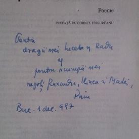 Petre Stoica - Uitat printre lucrurile uitate (cu autograf)