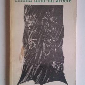 Radu Carneci - Cantand dintr-un arbore