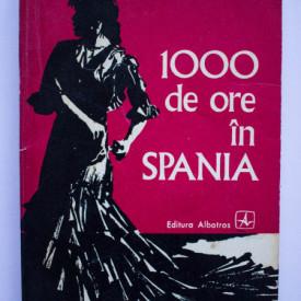 Valentin Silvestru - 100 de ore in Spania