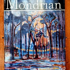 Victor Ieronim Stoichita - Mondrian (editie hardcover)
