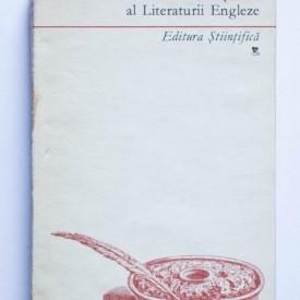 Ana Cartianu, Ioan Aurel Preda (coord.) - Dictionar al Literaturii Engleze (editie hardcover)