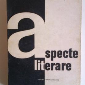 Matei Calinescu - Aspecte literare