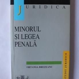 Ortansa Brezeanu - Minorul si legea penala