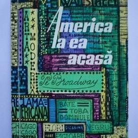 Sergiu Farcasan - America la ea acasa