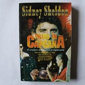 Sidney Sheldon - Prins in capcana