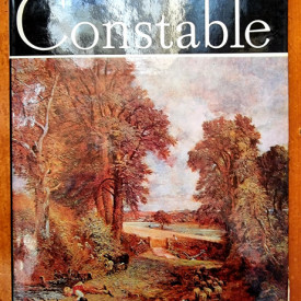 Vasile Nicolescu - Constable (editie hardcover)