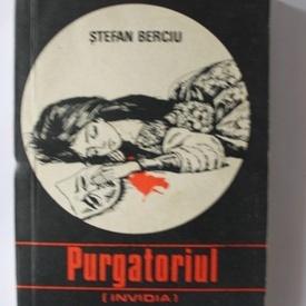 Stefan Berciu - Purgatoriul