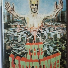 Francisc Pacurariu - The labyrinth (editie hardcover)