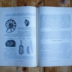 G. Macovei - Geologie stratigrafica cu privire speciala la teritoriul Romaniei (editie hardcover)