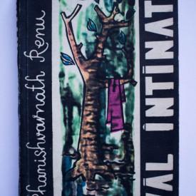 Phanishvarnath Renu - Val intinat