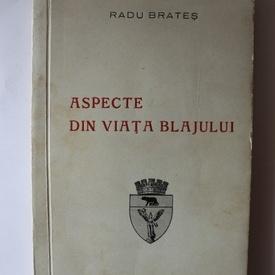 Radu Brates - Aspecte din viata Blajului
