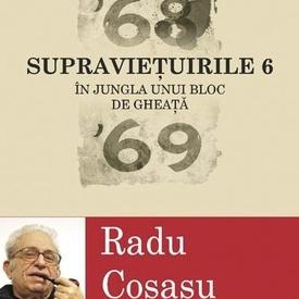 Radu Cosasu - Supravietuirile 6. In jungla unui bloc de gheata