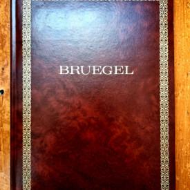 Robert Genaille - Bruegel (editie in limba franceza, invelita in piele, hardcover)
