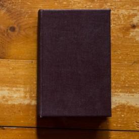 Sinclair Lewis - Hotelul fericitilor (editie hardcover, interbelica, frumos relegata)