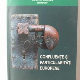 Valentin Trifescu (coord.) - Confluente si particularitati europene